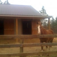 Pasture into stalls