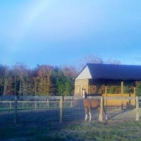 Run In Shed with Rainbow